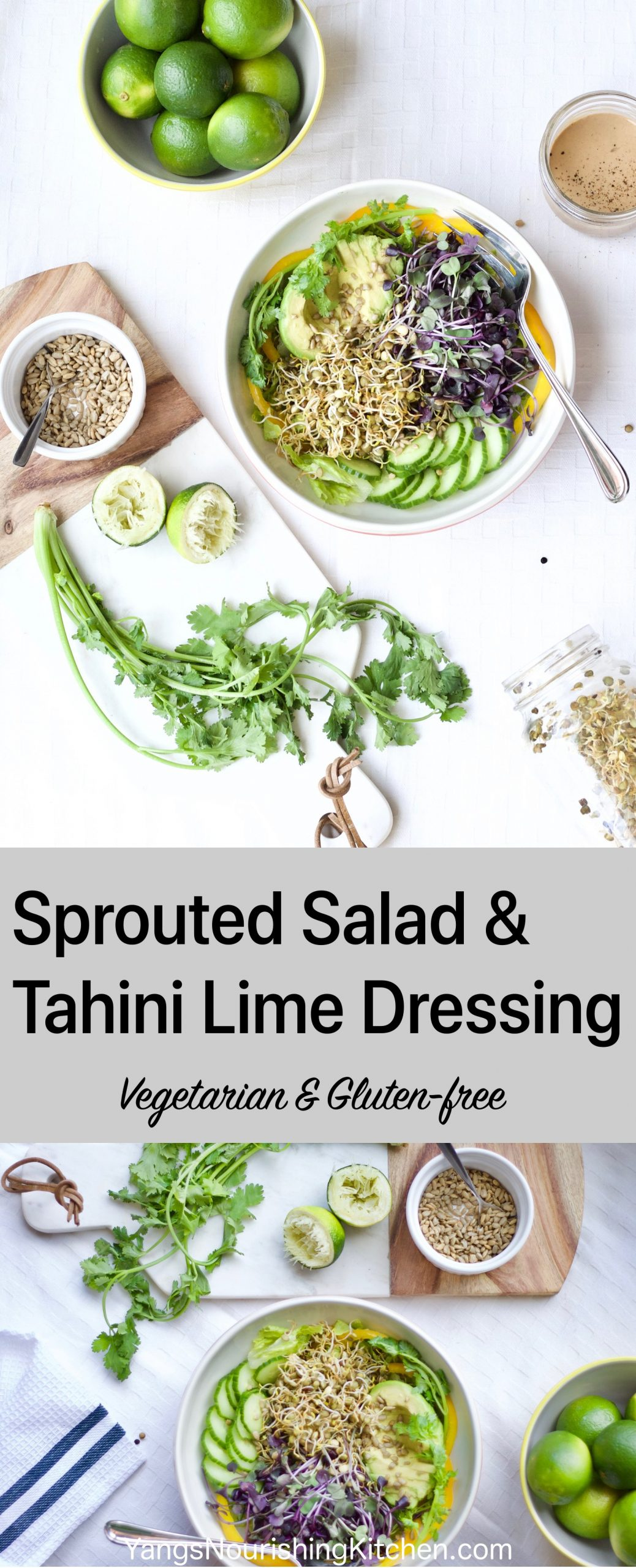 Tahini Lime Dressing + Sprouted Salad