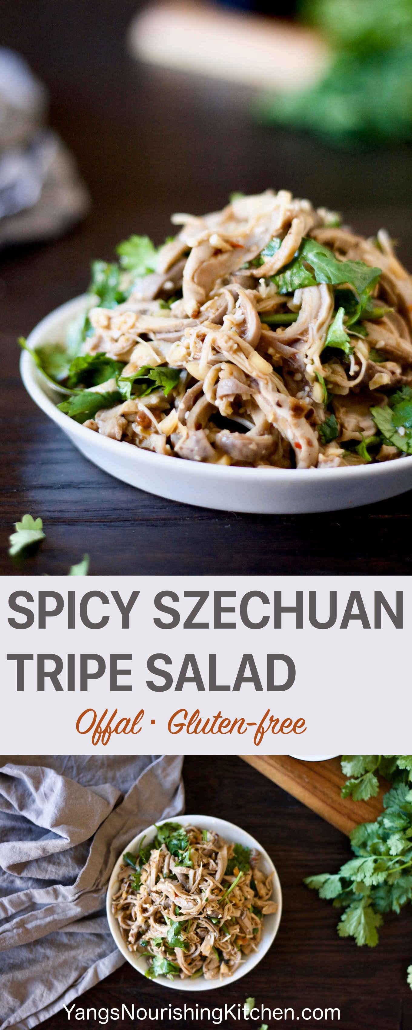 Spicy Szechuan Tripe Salad